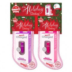Her Holiday Stocking 2017 - 6 Piece Hanging  Display